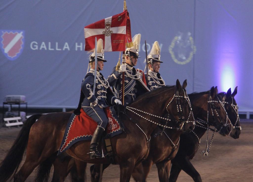 1.Gardehusar regimentets Hesteskadron (9)