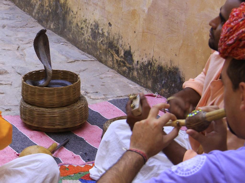 2011 Indien Jaipur (186) Amber