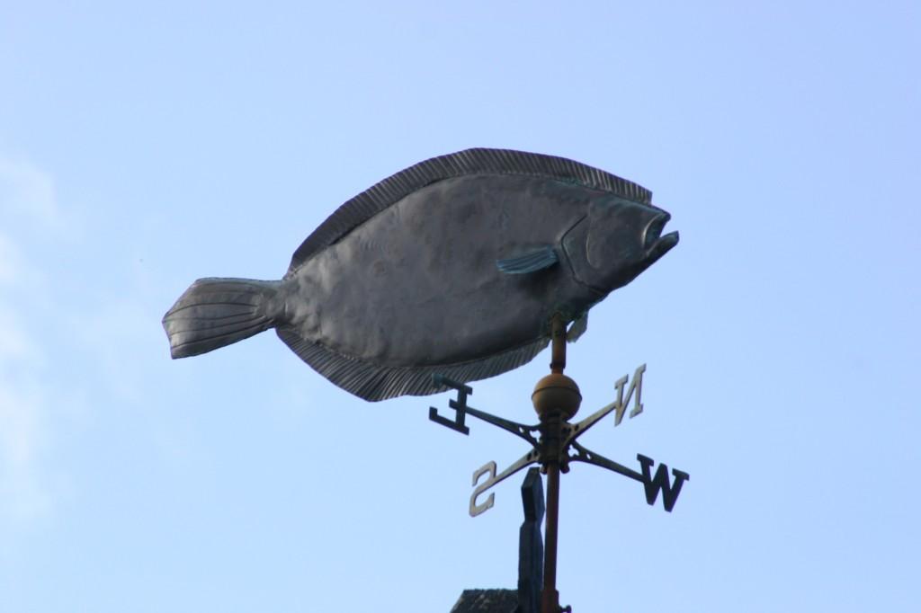 Bornholm 2008 (6)