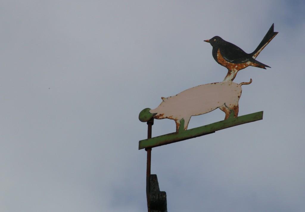 Bornholm (2a) 2008