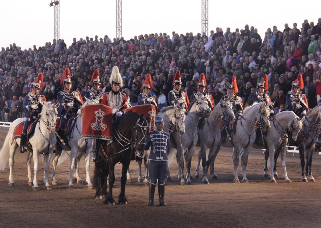 Gardehusar regimentets Hesteskadron (7)