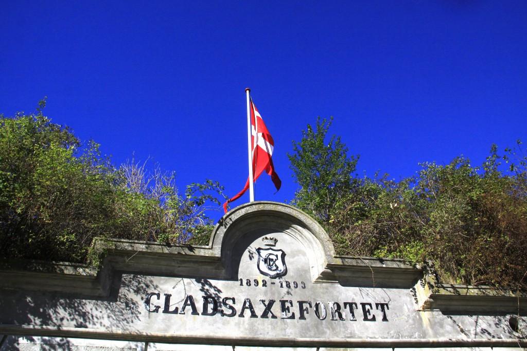 Gladsaxe Vestvoldens Dag - 2013 (34)