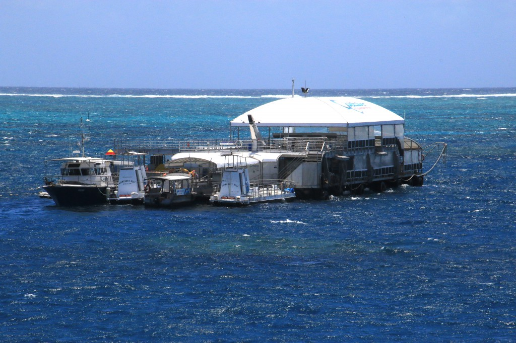 Great Barrier Reef (1)