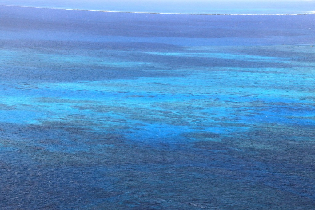Great Barrier Reef (12)