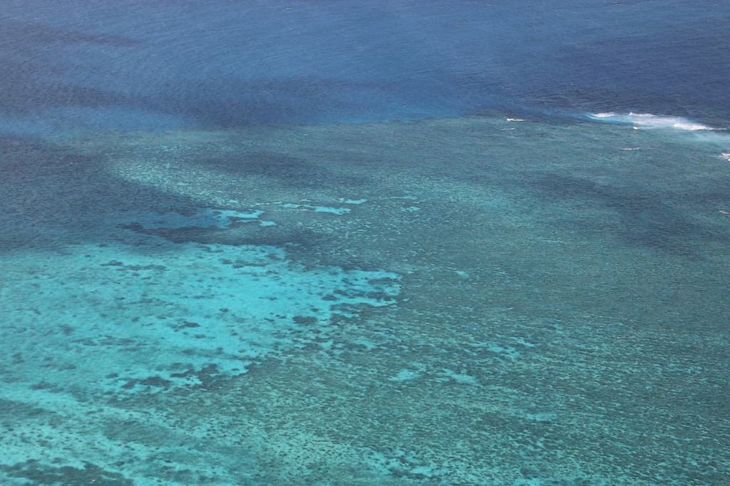 Great Barrier Reef (15)