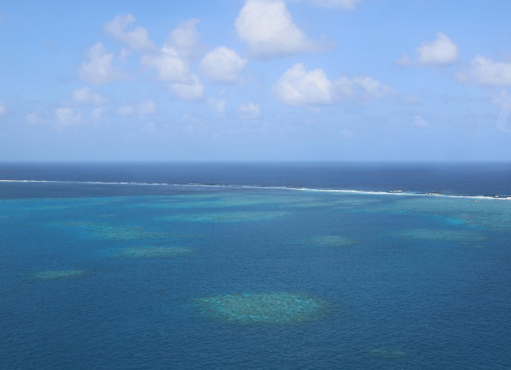 Great Barrier Reef (18)