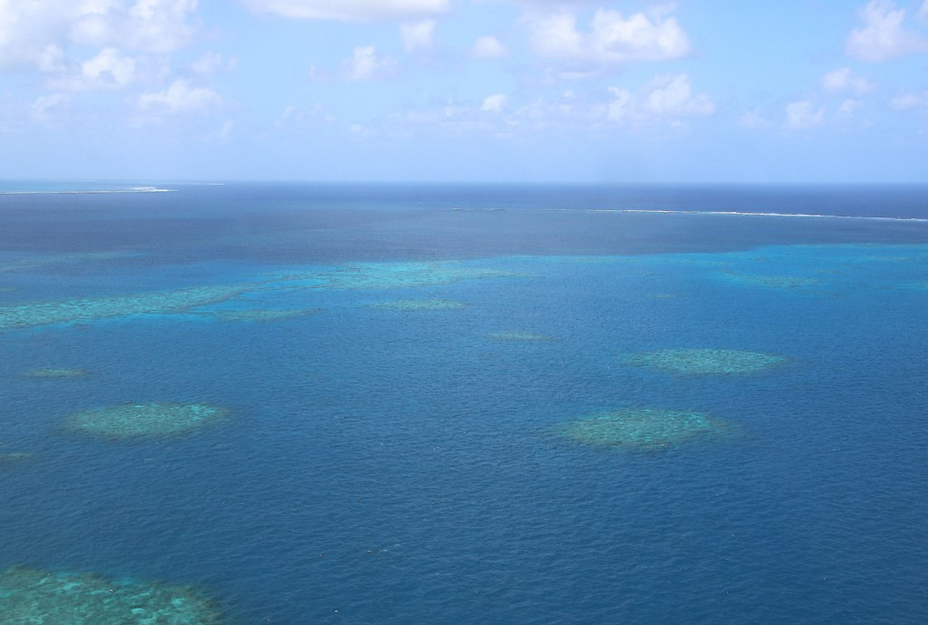 Great Barrier Reef (19)