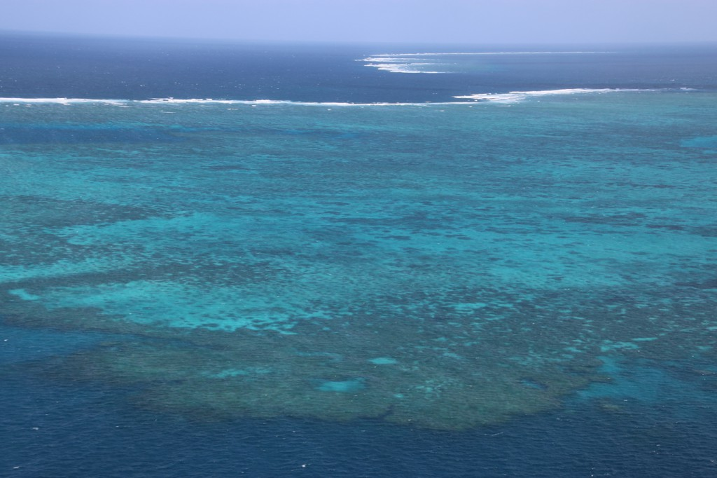 Great Barrier Reef (20)