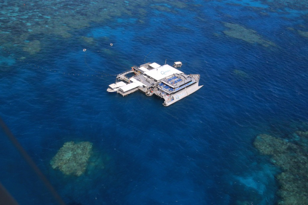 Great Barrier Reef (23)