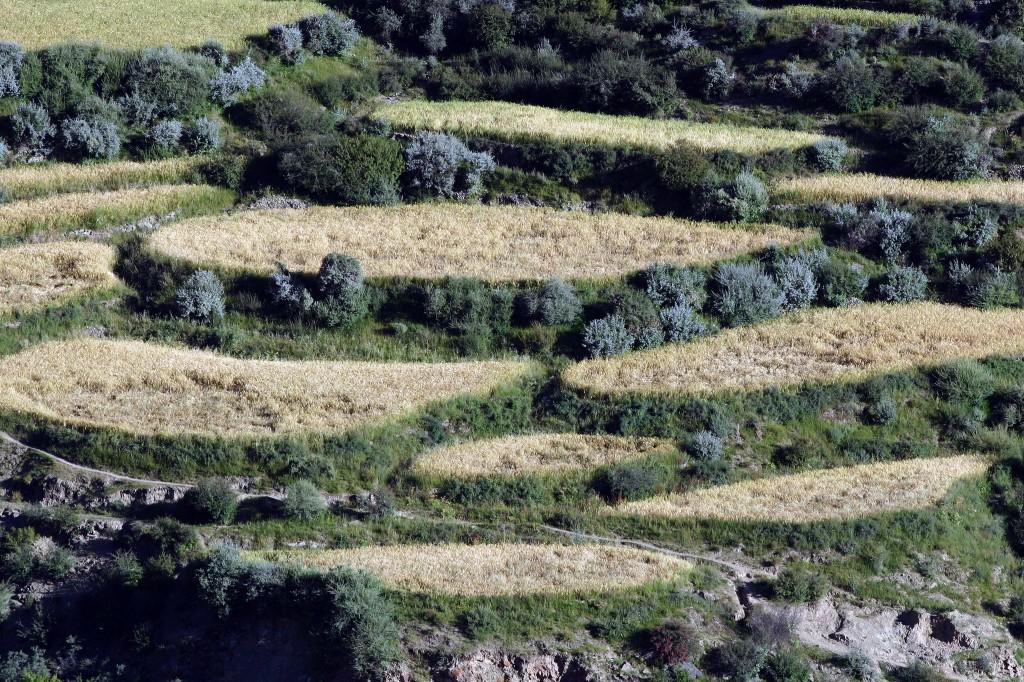 Tibet (19a
