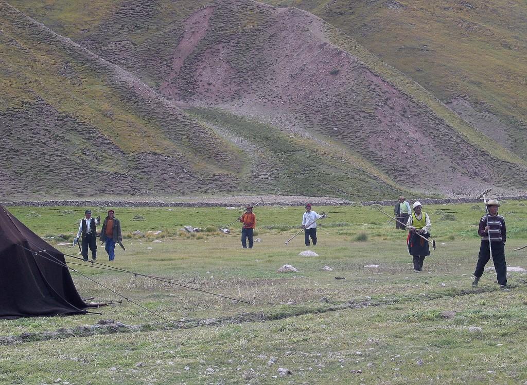 Tibet (22)